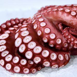 Whole Madako octopus