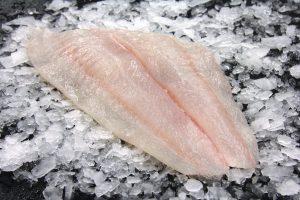 Halibut (Flounder) Fillet
